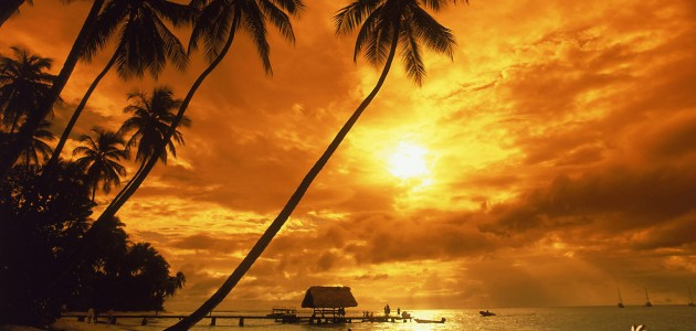 tropical-sunset-wallpaper-1920x1200